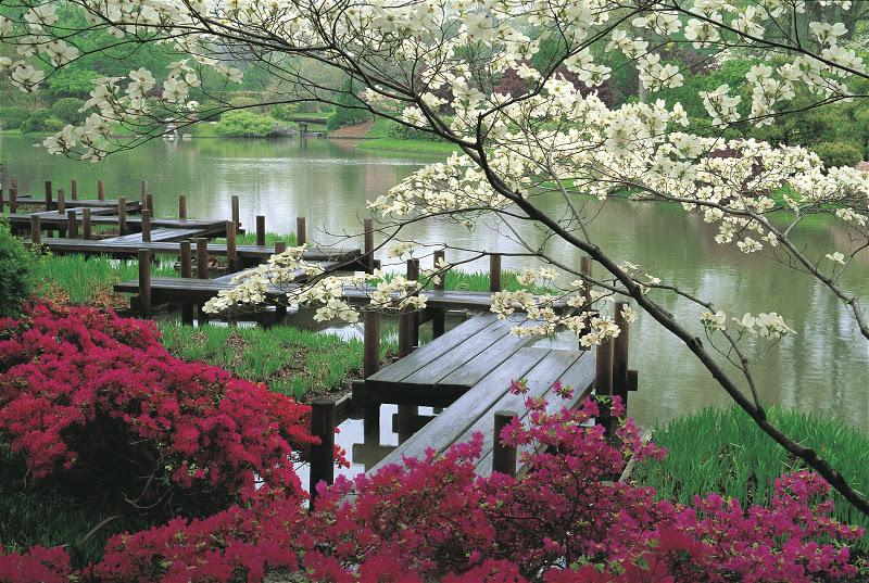 El Jardín Japonés es una pequeña parte de Japón en Buenos Aires.